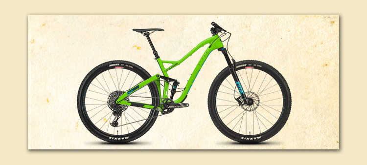 "niner bike green 29 "" fort myers customized"